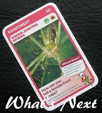 Woolworths <<AUSSIE ANIMALS>> Card 50/108 RAINFOREST Green Jumping Spider