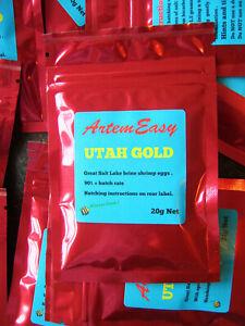 Brine Shrimp Eggs . Great Salt Lake Utah. 90 %+ Hatch Rate . 20g pack .