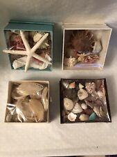 New listing Assortments Mix Sea Shell Starfish Corals In 4 Cardbord Boxes Beach Decor Craft