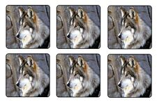"WOLF COASTERS - 1/4"" BAR & BEER SET OF 6"