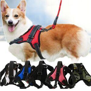 Dog Soft Adjustable Harness Pet Large Medium Walk Out Vest Chest Strap