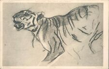 Postcard Sketch of A Tiger national Gallery Millbank  Unposted