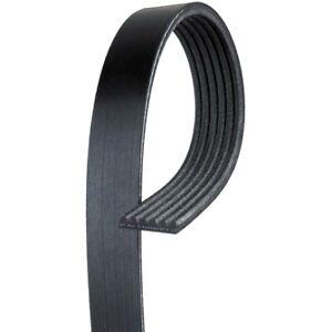 AC Delco 6K448 Serpentine Belt - Standard