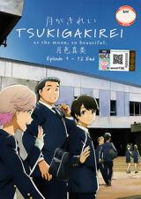 Tsuki ga Kirei [As the Moon, So Beautiful] DVD Complete 1-12 (Jap) - US Seller