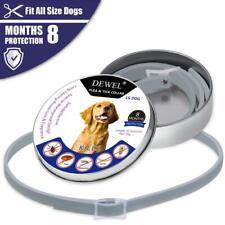 New listing Dewel Dog Collar Anti Flea 8 Months Protection Pet Collar Anti Ticks