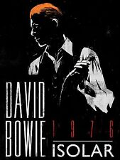 """David Bowie Isolar 1976 16"""" x 12"""" Photo Repro Concert Poster"""