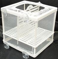 Aquarium Fish Tank Guppy Breeding Breeder Baby/Fry Net Trap Box Hatchery #BN-1