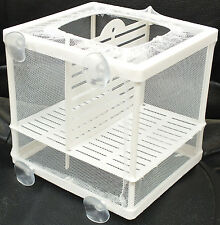 Aquarium Fish Tank Guppy élevage éleveur Baby/Fry Net Trap Box Hatchery #BN-1
