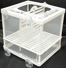 Acuario pescado tanque De Cría Guppy criador Bebé/Fry Trampa Criadero #BN-1 Caja neto
