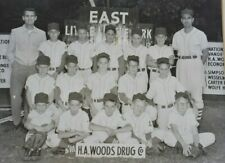 Evansville Indiana Little League Baseball Team Photo H.A. WOODS Drug Company 50s