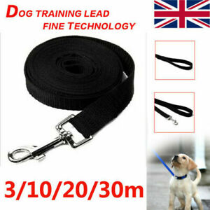 """Dog Pet Puppy Training Lead Leash 100ft 30m Extra Long Obedience Recall  1"""" wide"""