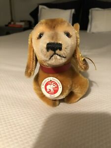 Steiff  dog dachsund  dackel mohair  with button made in Germany 64