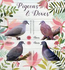 Nevis 2019 MNH Pigeons & Doves Ruddy Ground Dove Rock Pigeon 4v M/S Birds Stamps