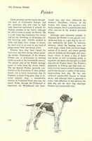 "The Pointer - Vintage Dog Art Print - Matted ""G"""