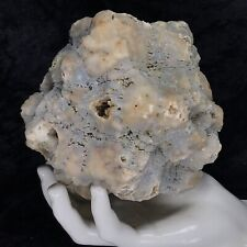 "New Listing5"" Fossil Geode Uncut Lapidary Solid Crystal Quartz Chalcedony Unopened Ky 3.8Lb"