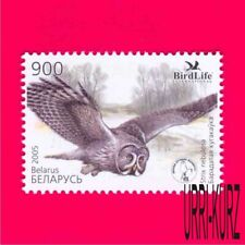 BELARUS 2005 Nature Fauna Bird of Year Owl 1v Sc548 Mi582 MNH