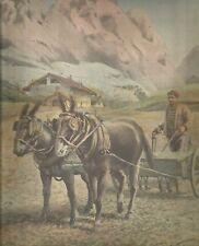 K0226 Seminatrice trainata da Cavalli - Contadino - Montagna - Stampa antica