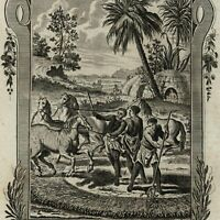 """South Africa """"hottentots"""" agriculture corn huts 1778 nice old engraved print"""