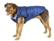 Jazz Dog Coat By Weatherbeeta
