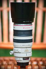 Canon EF 100-400mm 1 : 4.5-5.6L IS USM Professional Zoom Lens