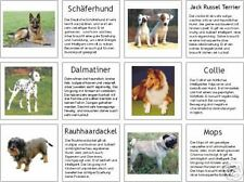 Hunde, Bild- u. Infokärtchen, Montessori, Freiarbeit