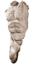 Ancient Greek Nude Naked Man Male Torso Sculpture statue museum replica