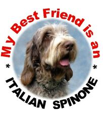 2 Italian Spinone Car Stickers By Starprint