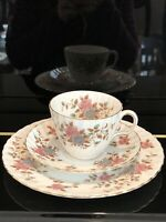 Vintage Adderley Best Bone China Teacup Saucer And Plate Set Made in England