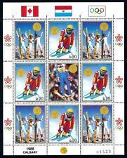 [72767] Paraguay 1988 Olympic Games Calgary Skiing Full Sheet MNH