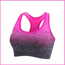 Ladies Seamless Sports Bra Breathable Fitness Brassieres Gradient Women Clothing