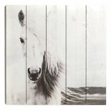Graham Brown Horse Wall Art WoodDecor Picture Grey White 20 x 20 x 1.5 New