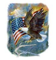 Bald Eagle & Flag Shirt, American Pride, Majestic, U.S.A., Patriotic T-Shirt