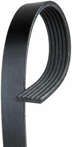 Gates K061002 Micro-V Serpentine Drive Belt For 13 Kia Sorento