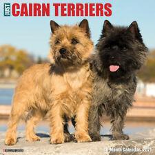 Just Cairn Terriers (dog breed calendar) 2021 Wall Calendar(Free Shipping)