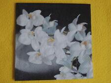 5 Servietten Orchideen Serviettentechnik 1/4 Blumen weiß schwarz grau  Orchidea