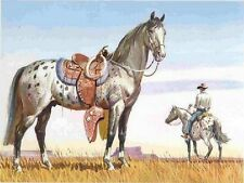 1962 APPALOOSA Horse Colored Print Original By Sam Savitt Free Shipping