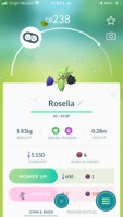 Pokemon Shiny Roselia Mini Account or Trade GO