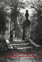 Dog Rescue Abandoned Dog Howls for Owner on Cold Night Large 1890s Antique Print