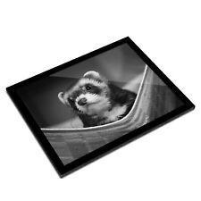 A3 Glass Frame Bw - Ferret Hammock Pet Rodent Animal #37246