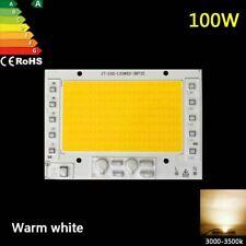 100W LED Chip COB bulb high power warm white lamp integrated smart ic 220v 230V