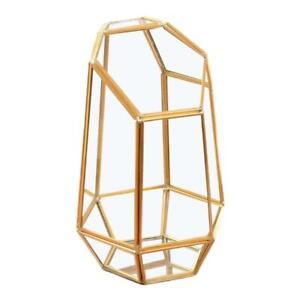 9.4in Height Indoor Tabletop Irregular Glass Geometric Air Plants Terrarium Box