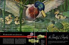 1948 Chrysler Mopar Plymouth Beautiful Duck ducklin turtle wildlife Art PRINT AD