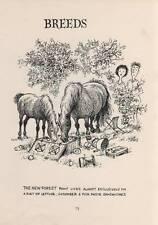 1962: Thelwell's Original Vintage Cartoon Print Comical Horse Pony & Rider