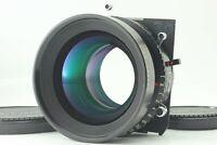【TOP MINT】 Nikon Nikkor W 300mm F5.6 Lens Copal 3 Shutter From Japan #438