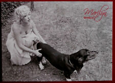MARILYN MONROE - Shaw Family Archive - Breygent 2007 - Individual Card #19