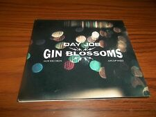 GIN BLOSSOMS Day Job  US  Promo Only CD