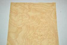 Ash Burl Raw Wood Veneer Sheets 85 X 20 Inches 142nd G8629 48