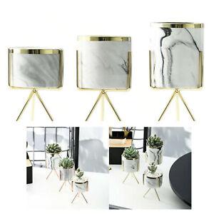Keramik Vase Marmor Design Ständer Blumenvase Blumen Topf Tisch-Dekoration
