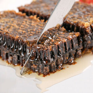 Old Honeycomb Chewing on Honey Farm Makes Real Honeycomb Honey Natural Bee Hives