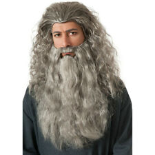 Gandalf Wig And Beard Kit Adult The Hobbit Lord Of The Rings Costume Wizard